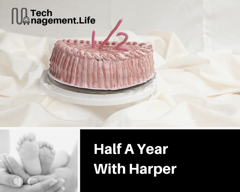 Half A Year With Harper - TechManagement.Life