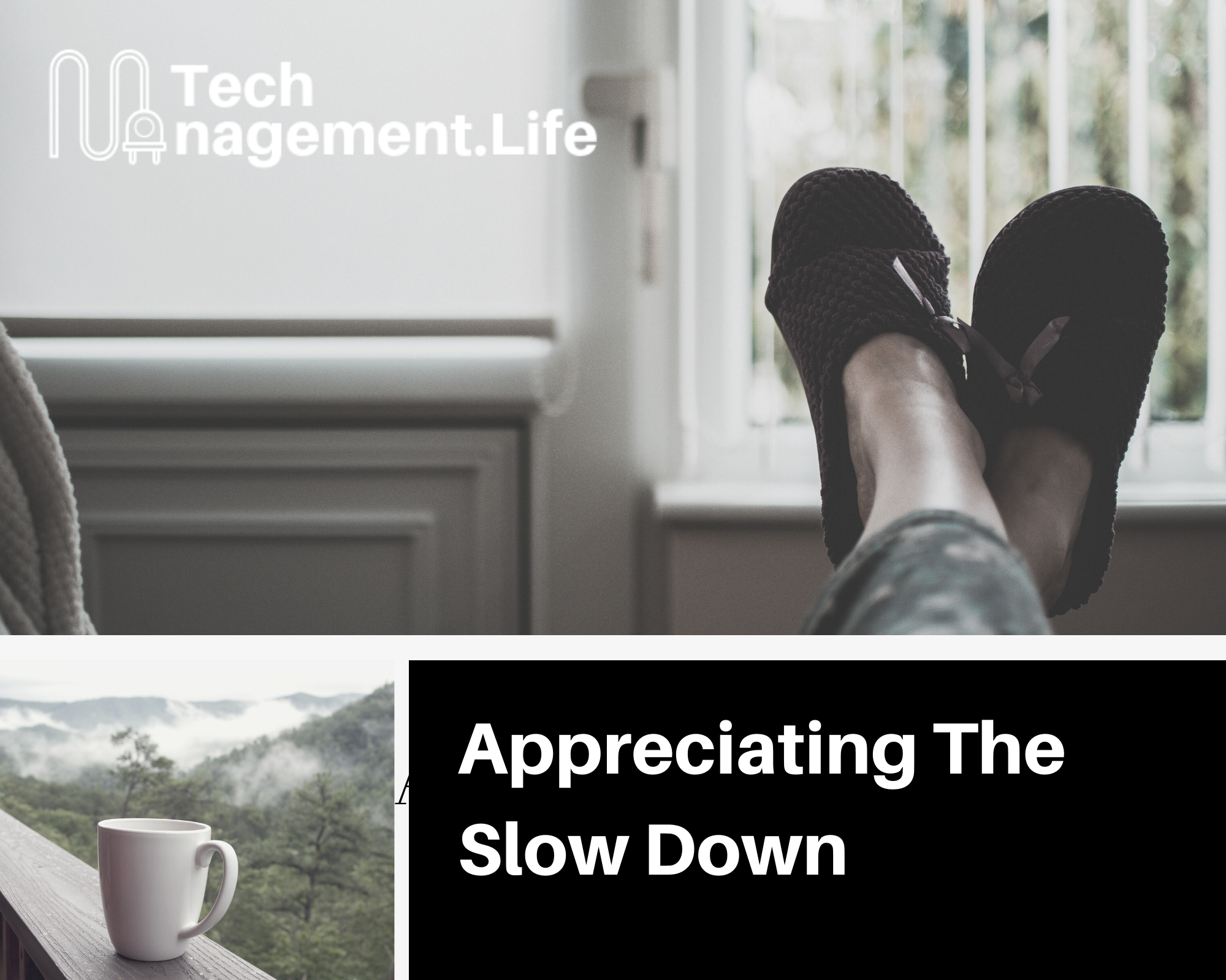 Appreciating The Slow Down - TechManagement.Life